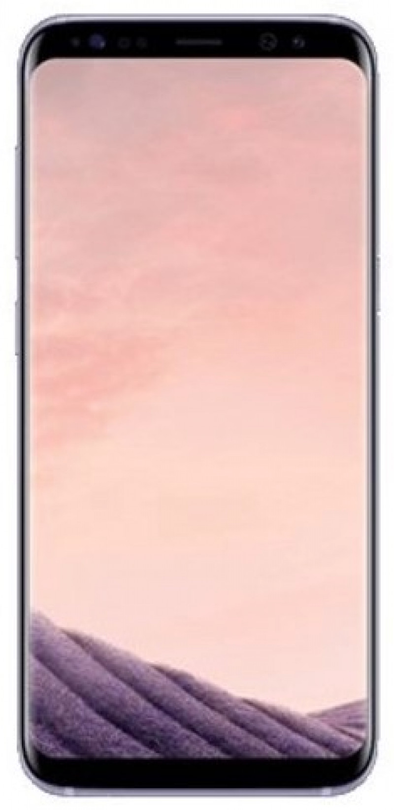 Samsung Galaxy S8+ G955F 64GB Gray